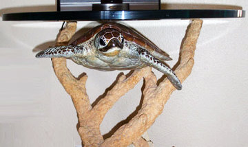Turtle Bronze End Table 1997 22in Sculpture - Robert Wyland