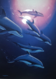 Dolphin Tribe 1995 Limited Edition Print - Robert Wyland