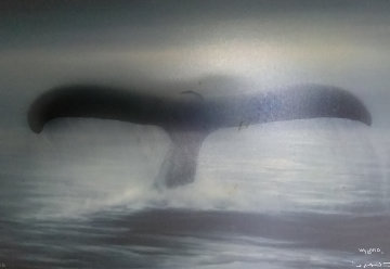 Tails of Great Whales 1989 30x40 Huge Original Painting - Robert Wyland