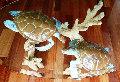Turtle Reef Bronze Coffee Table 1998 41 in Sculpture - Robert Wyland