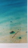 Dreaming of Paradise Colaboration With Dan Mackin 2000 Limited Edition Print by Robert Wyland - 5