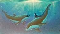 Dreaming of Paradise Colaboration With Dan Mackin 2000 Limited Edition Print by Robert Wyland - 2