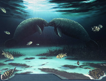 Manatee Encounter 2002 Limited Edition Print - Robert Wyland