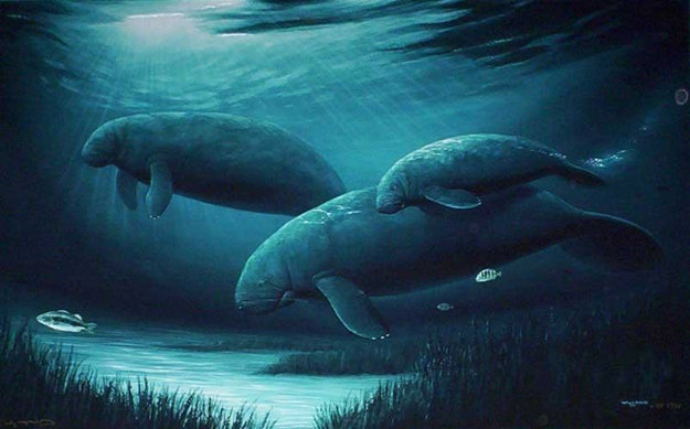 Endangered Manatees 1999 Limited Edition Print by Robert Wyland