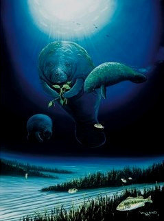 Save the Manatees 1996 Limited Edition Print by Robert Wyland