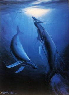 Genesis 1998 Limited Edition Print - Robert Wyland
