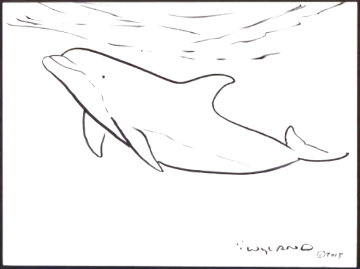Dolphin 2015 18x20 Drawing - Robert Wyland