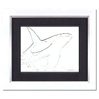 Orca 2015 18x20 Drawing by Robert Wyland - 1