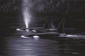 Orca Evening 2002 Limited Edition Print - Robert Wyland