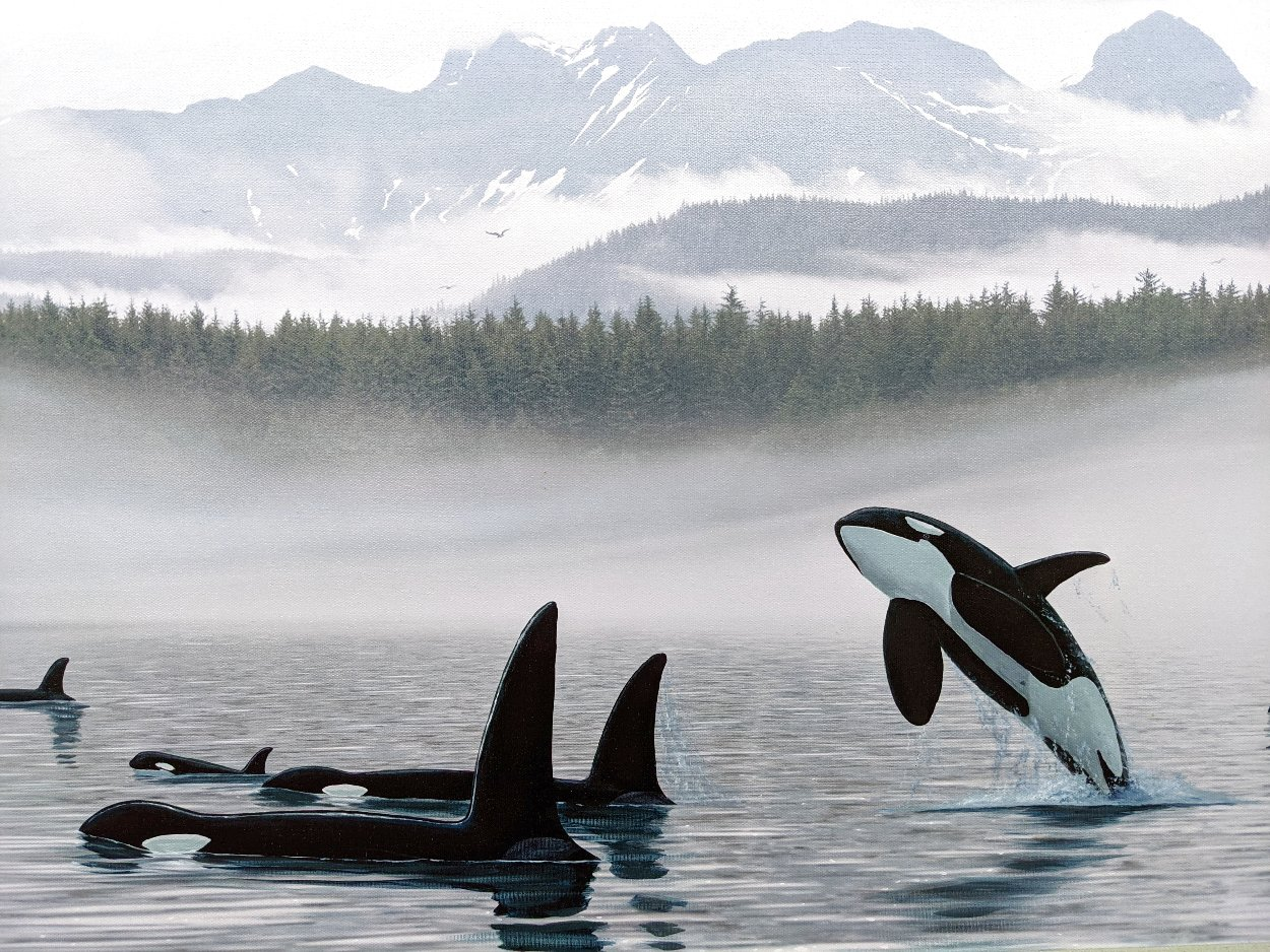 Misty Orca Waters 2008 Limited Edition Print by Robert Wyland