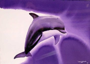 Key Dolphin Watercolor 1995 15x21 Watercolor - Robert Wyland