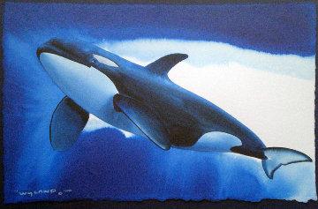 Orca Free Watercolor 1998 16x20 Watercolor - Robert Wyland