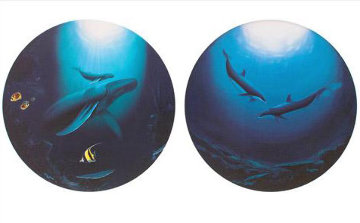Innocent Age/Dolphin Serenity Limited Edition Print by Robert Wyland