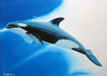 Orca Blue Waters 1992 15x20 Watercolor - Robert Wyland