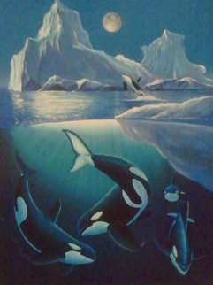 Arctic Orca 2000 Limited Edition Print by Robert Wyland