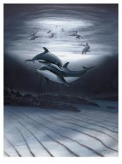 Dolphin Affection Limited Edition Print by Robert Wyland