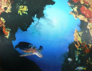 Ocean Portal Limited Edition Print by Robert Wyland