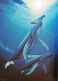 Whales 1995 Limited Edition Print - Robert Wyland
