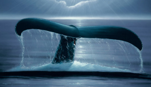 Whale Sighting 2001 Limited Edition Print by Robert Wyland