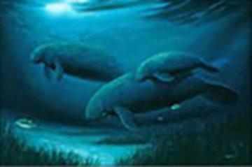 Endangered Manatees 1999 Koa Frame Limited Edition Print - Robert Wyland