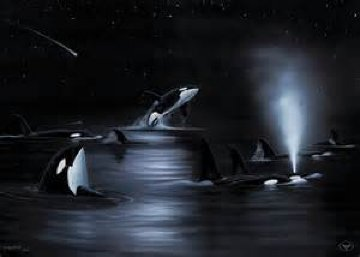 Orca's Starry Night 2004 53x42 Limited Edition Print - Robert Wyland