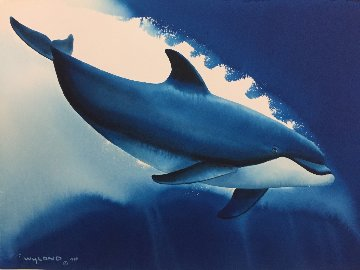 Atlantic Bullnose Watercolor 1999 14x20 Watercolor - Robert Wyland