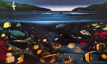 Hanauma Bay 1993 Hawaii Limited Edition Print by Robert Wyland