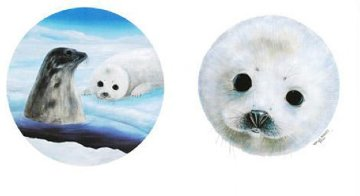 Save the Seals 1990 Limited Edition Print - Robert Wyland