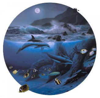 Dolphin Moon 1992 Limited Edition Print by Robert Wyland