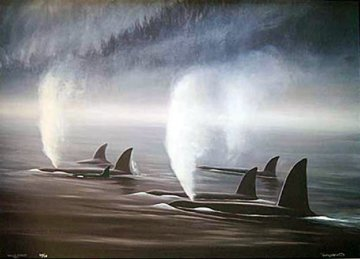 Orca Mist 1990 Limited Edition Print by Robert Wyland