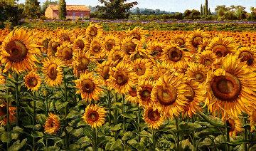 Sunflowers in a Summer Breeze 2016 32x48 Original Painting by Caroline Zimmermann