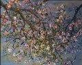 Almond Branches 31x36 Original Painting - Bruno Zupan